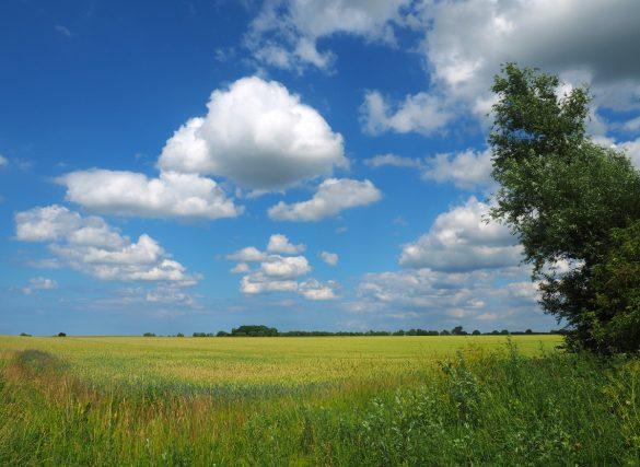 Sonntagsspaziergang Nordwestmecklenburg