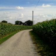der Weg ins Dorf ...